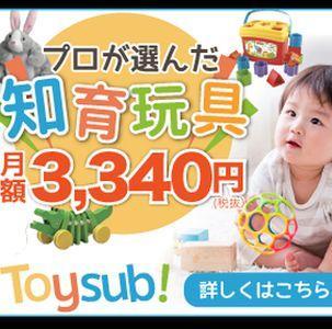 toysube300.jpg